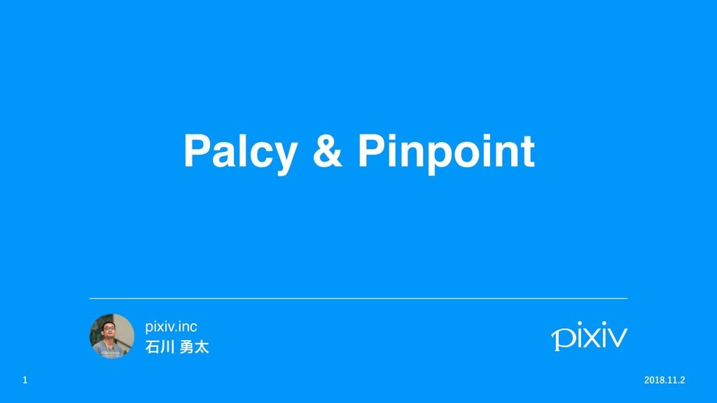 Palcy & Pinpoint    pixiv.inc ੴ ༐ଠ