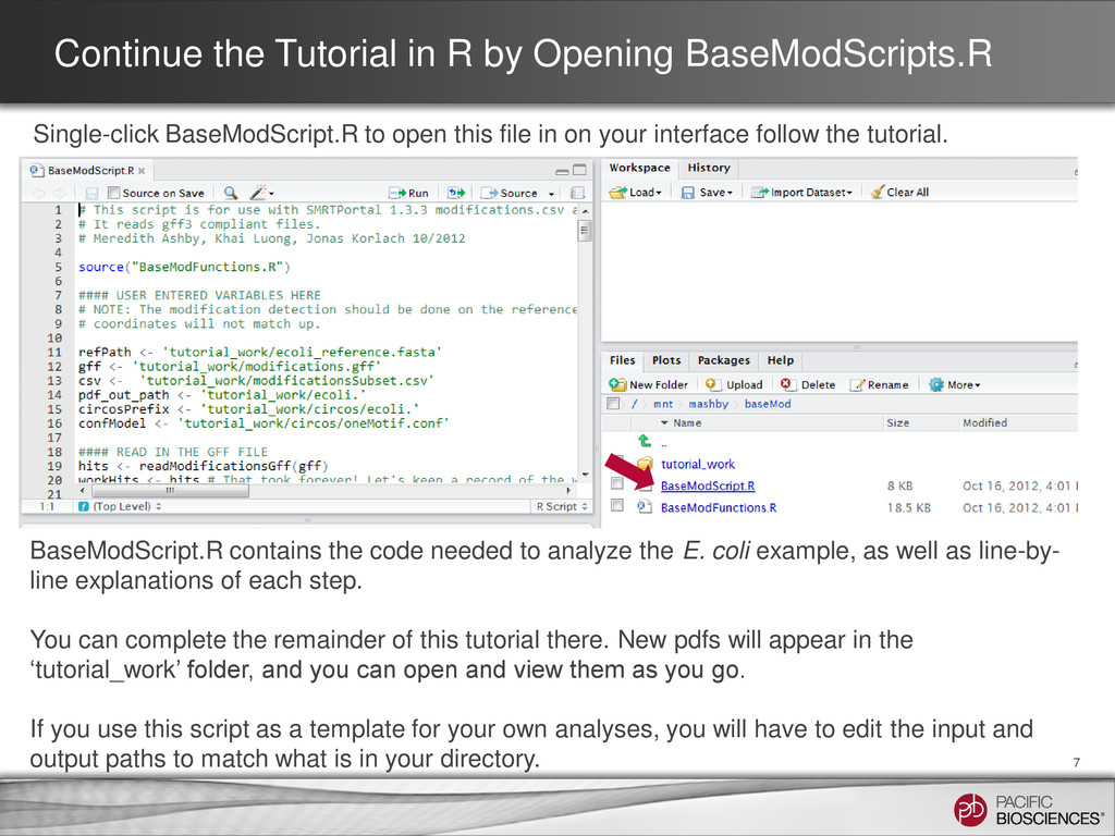 Continue the Tutorial in R by Opening BaseModSc...