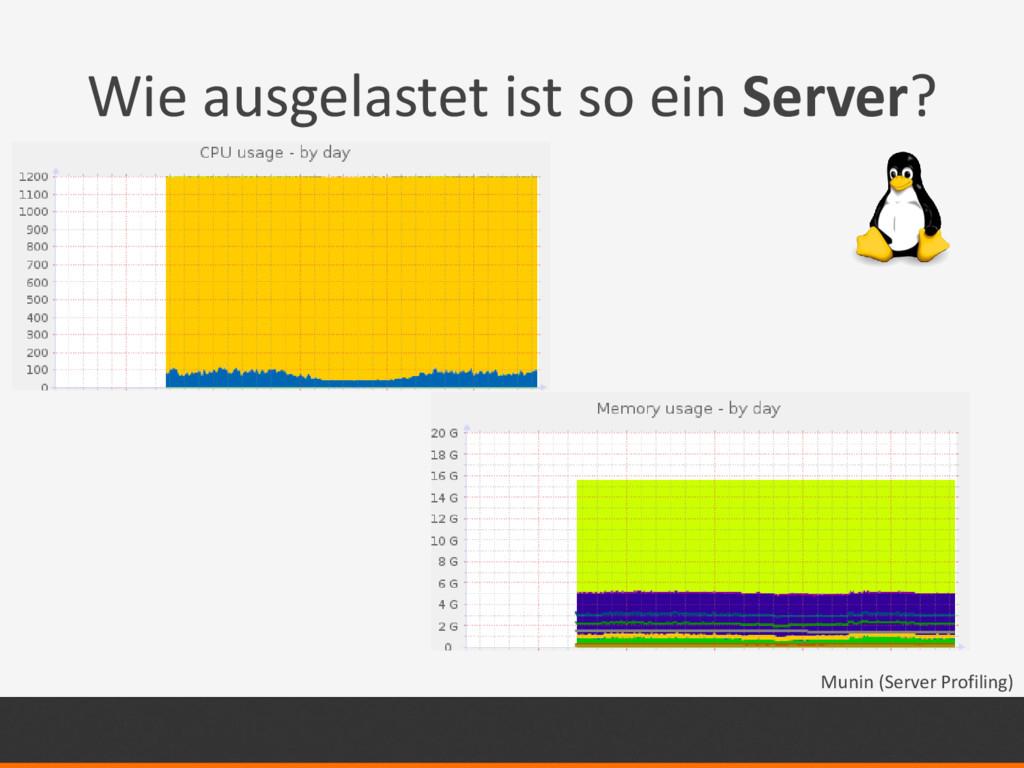 Wie ausgelastet ist so ein Server? Munin (Serve...