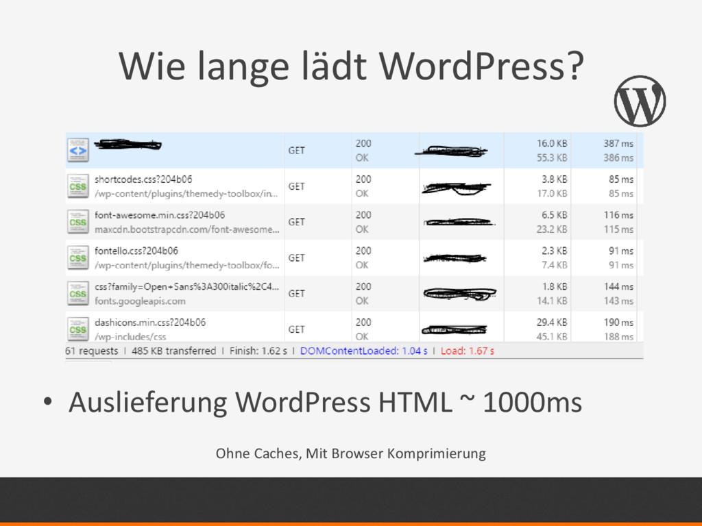 Wie lange lädt WordPress? • Auslieferung WordPr...