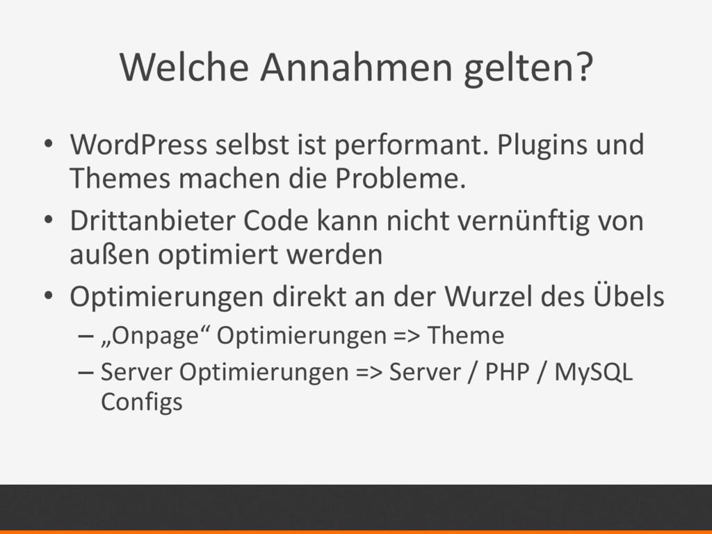 Welche Annahmen gelten? • WordPress selbst ist ...