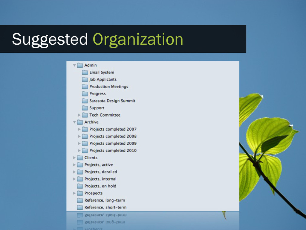 Suggested Organization