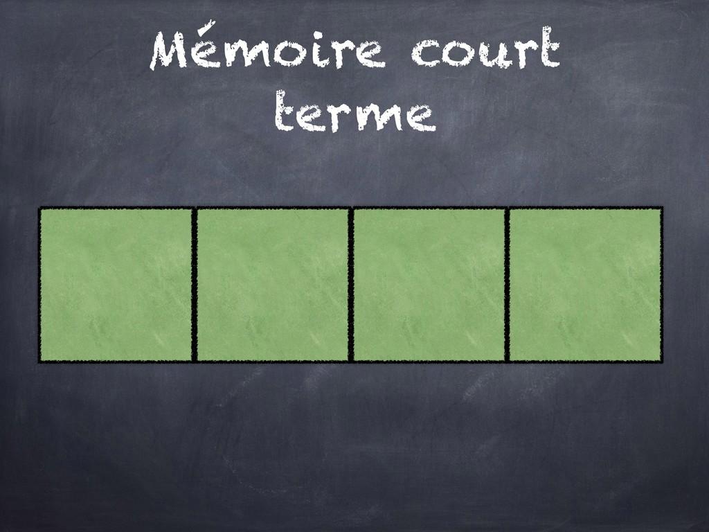 Mémoire court terme