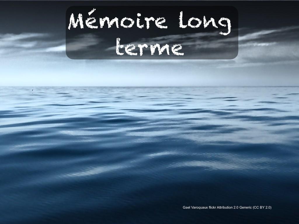 Mémoire long terme Gael Varoquaux flickr Attrib...