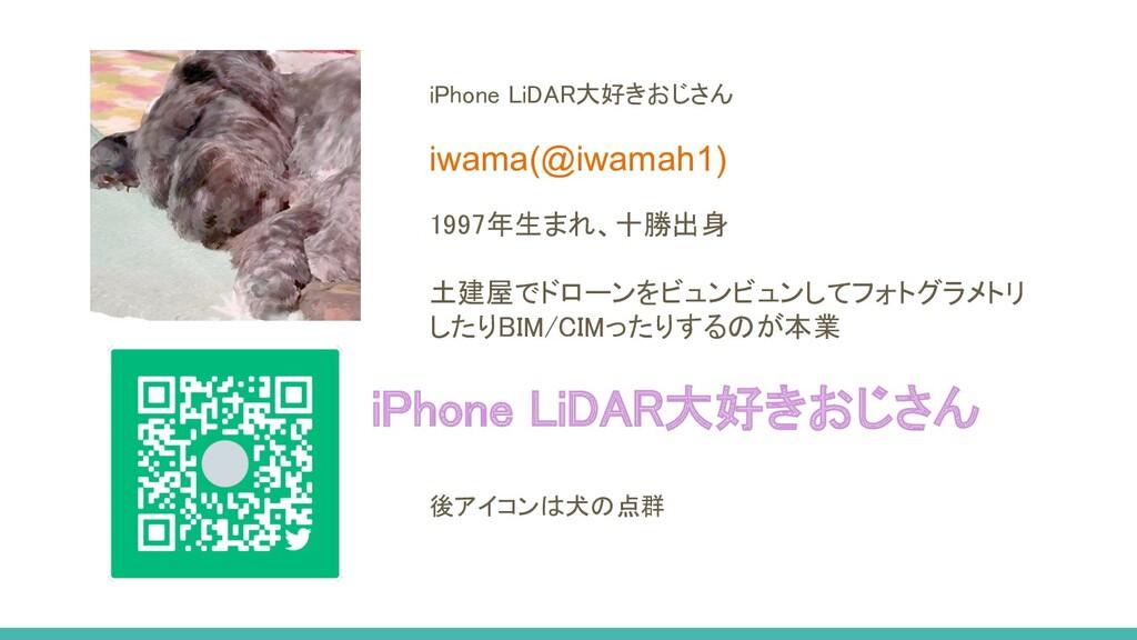 iPhone LiDAR大好きおじさん iwama(@iwamah1) 1997年生まれ、十...
