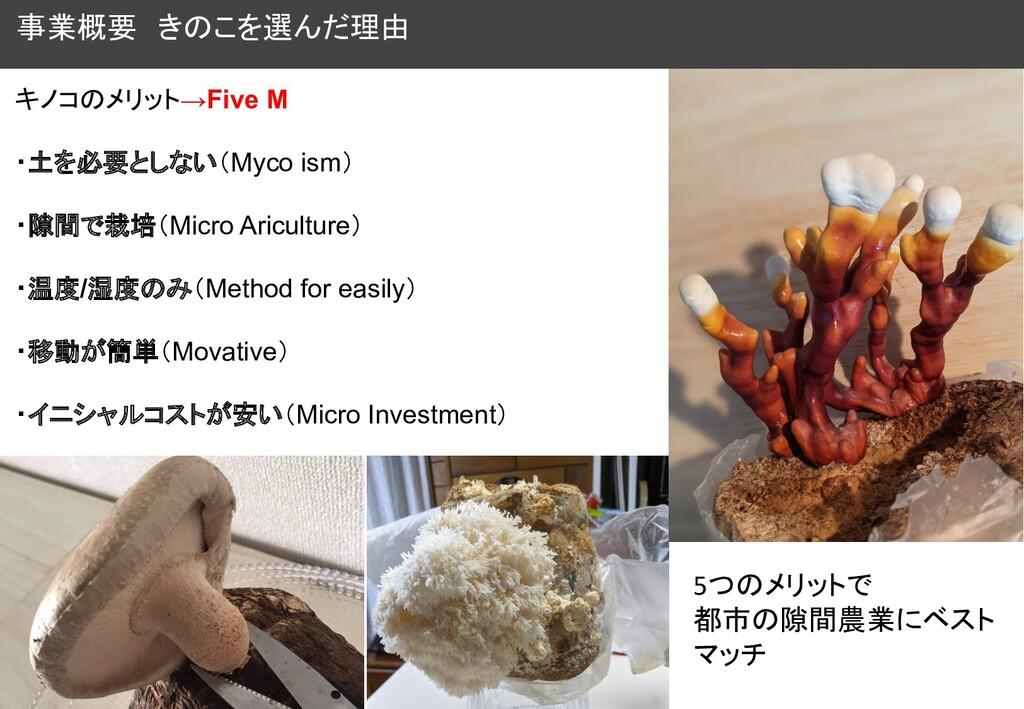 事業概要 きのこを選んだ理由 キノコのメリット→Five M ・土を必要としない(Myco i...