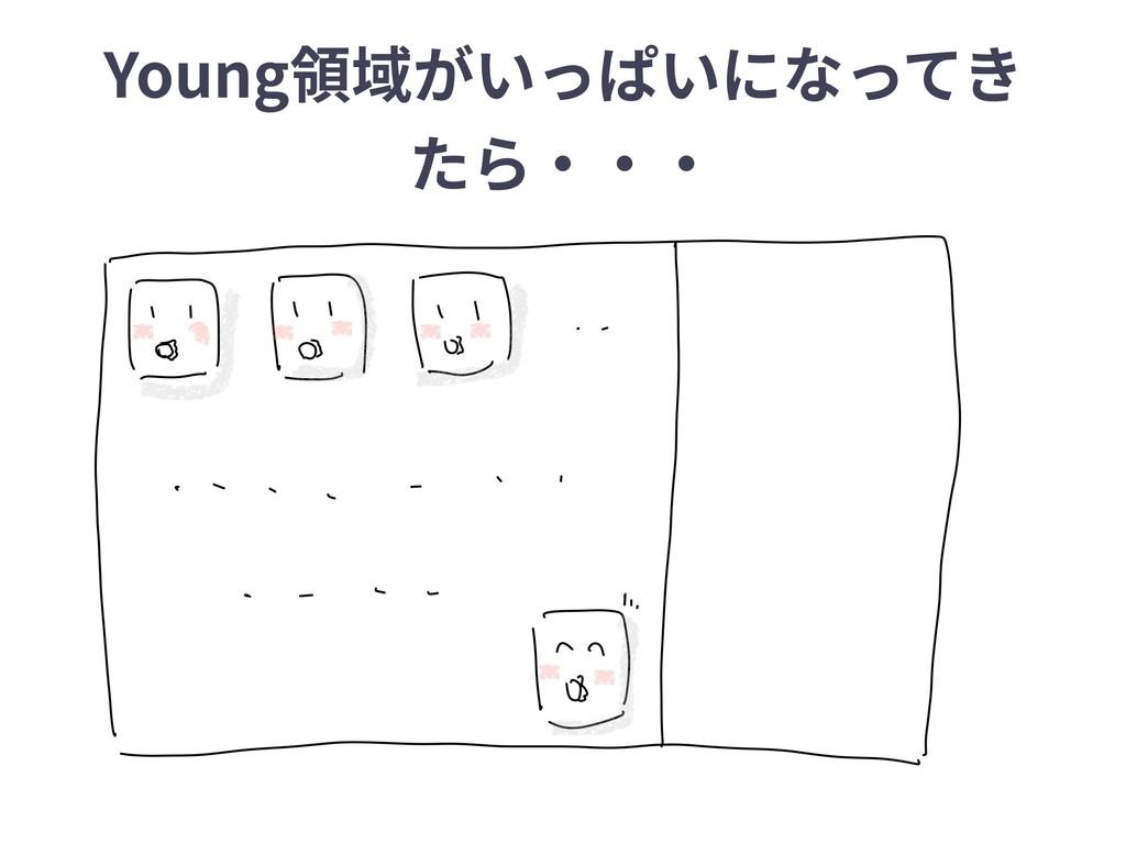 Young領域がいっぱいになってき たら‧‧‧