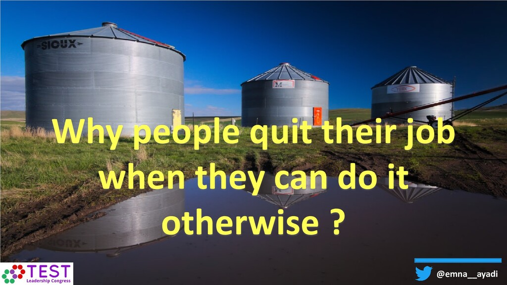 Why people quit their job when they can do it o...