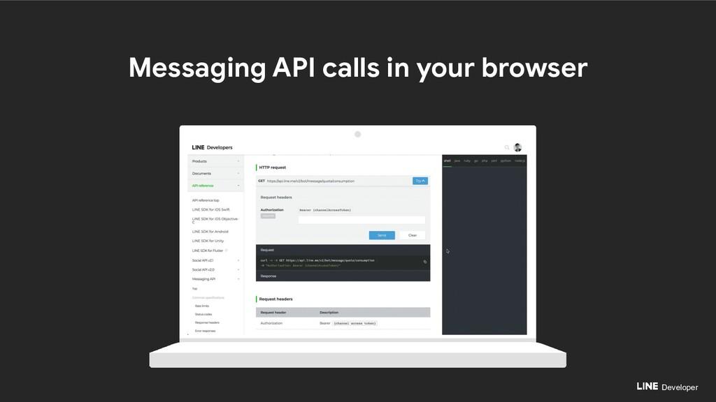 Developer Messaging API calls in your browser