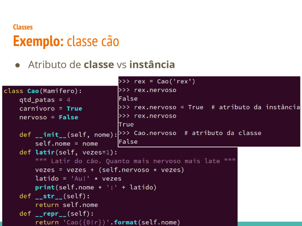 Classes Exemplo: classe cão ● Atributo de class...