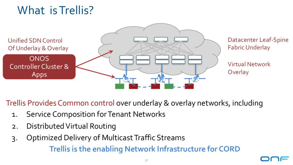 What is Trellis? 30 Datacenter Leaf-Spine Fabri...