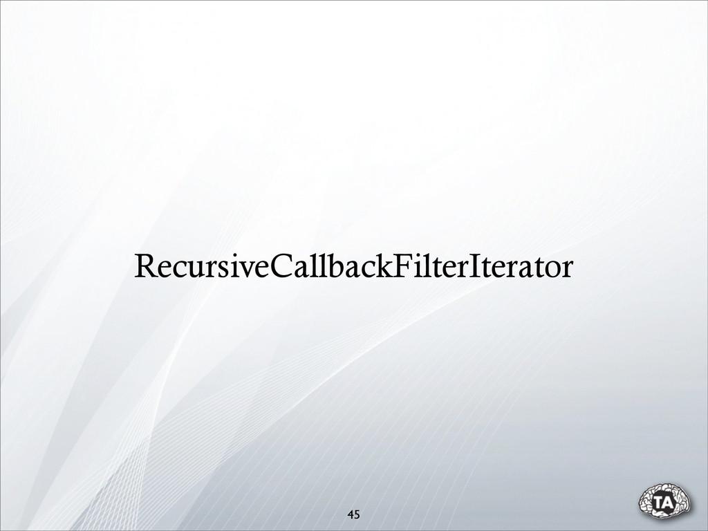 45 RecursiveCallbackFilterIterator
