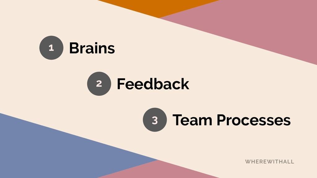 Brains 1 2 3 Feedback Team Processes