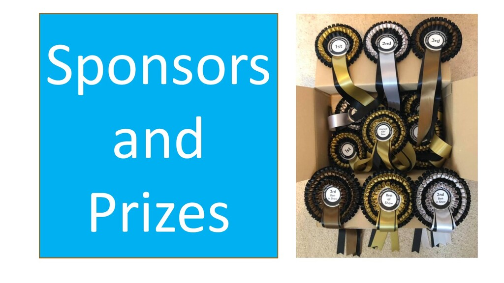 Sponsors and Prizes