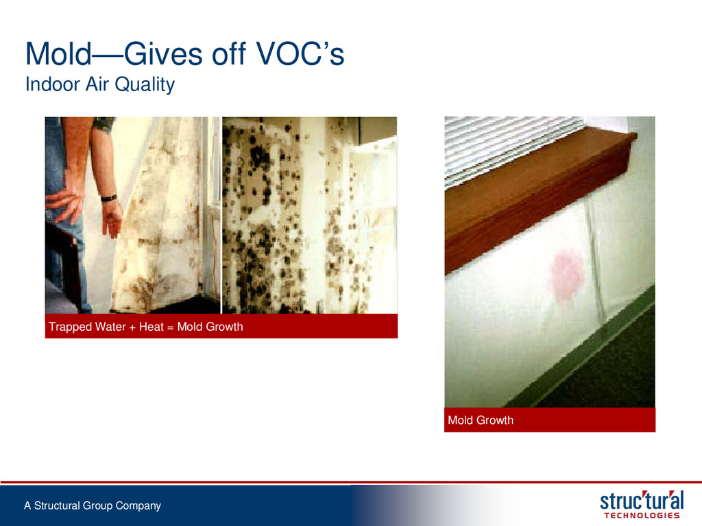 A Structural Group Company Mold—Gives off VOC's...