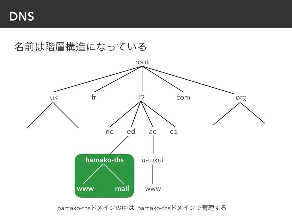 DNS root jp ed ac co ne u-fukui www com fr uk o...