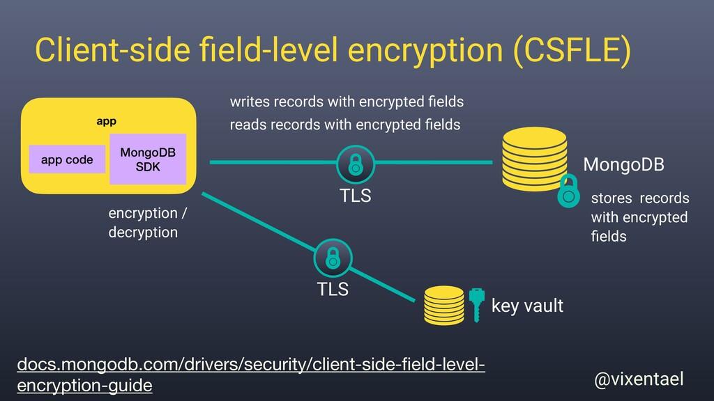 app @vixentael Client-side field-level encryptio...