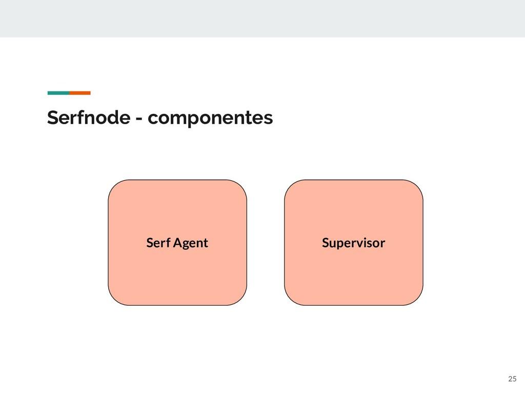 Serfnode - componentes Serf Agent Supervisor 25