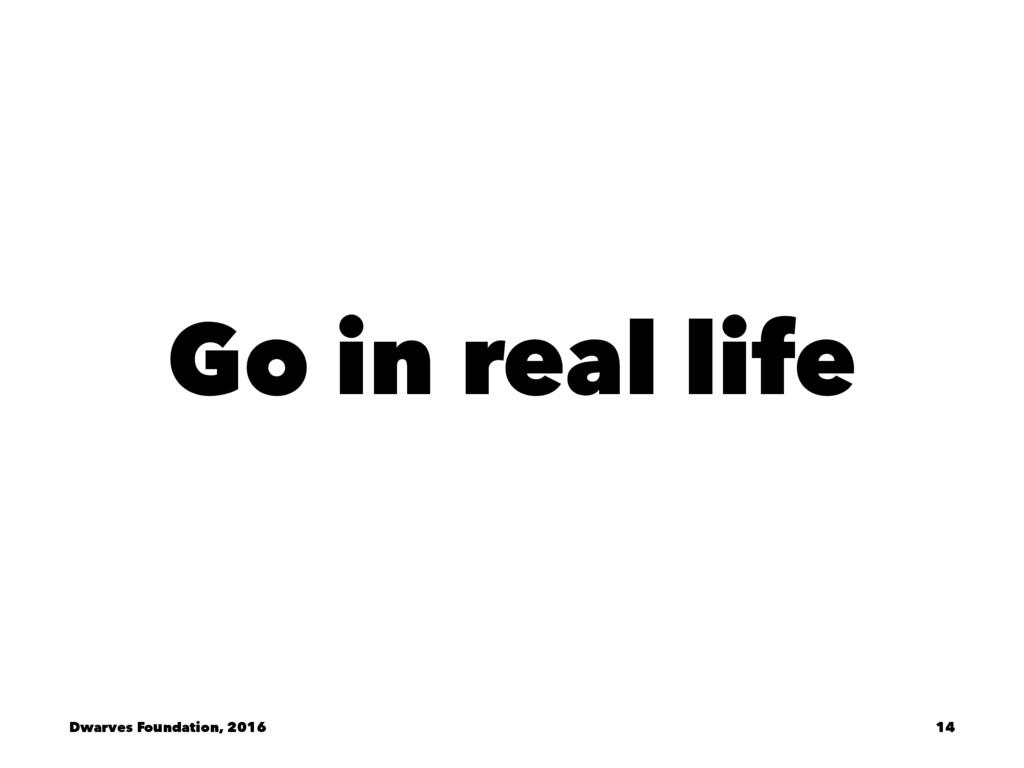 Go in real life Dwarves Foundation, 2016 14