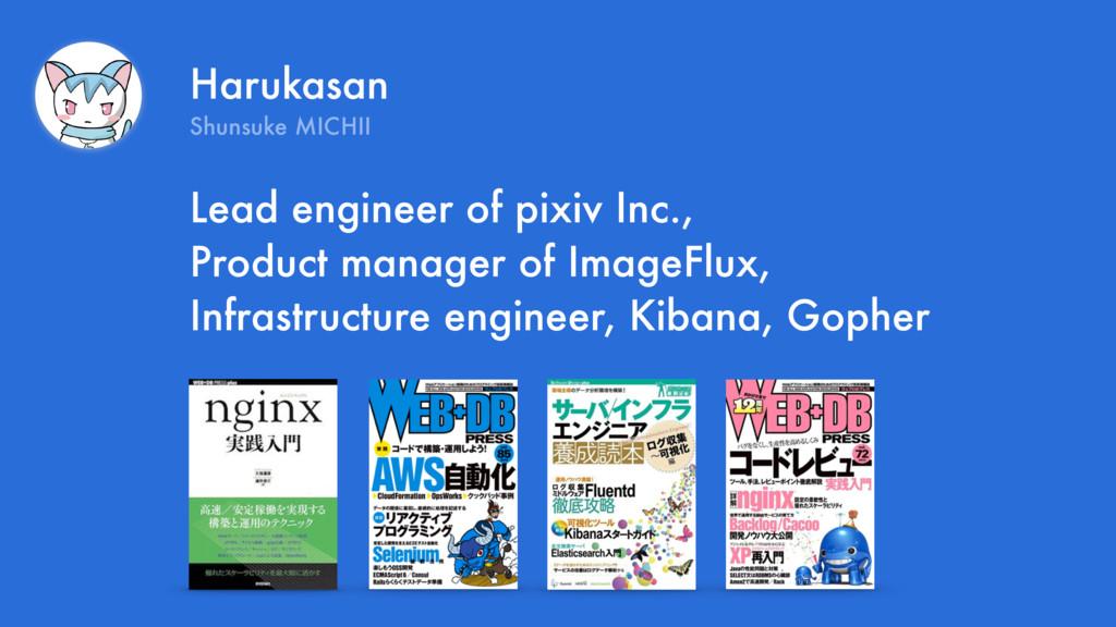 Harukasan Shunsuke MICHII Lead engineer of pixi...