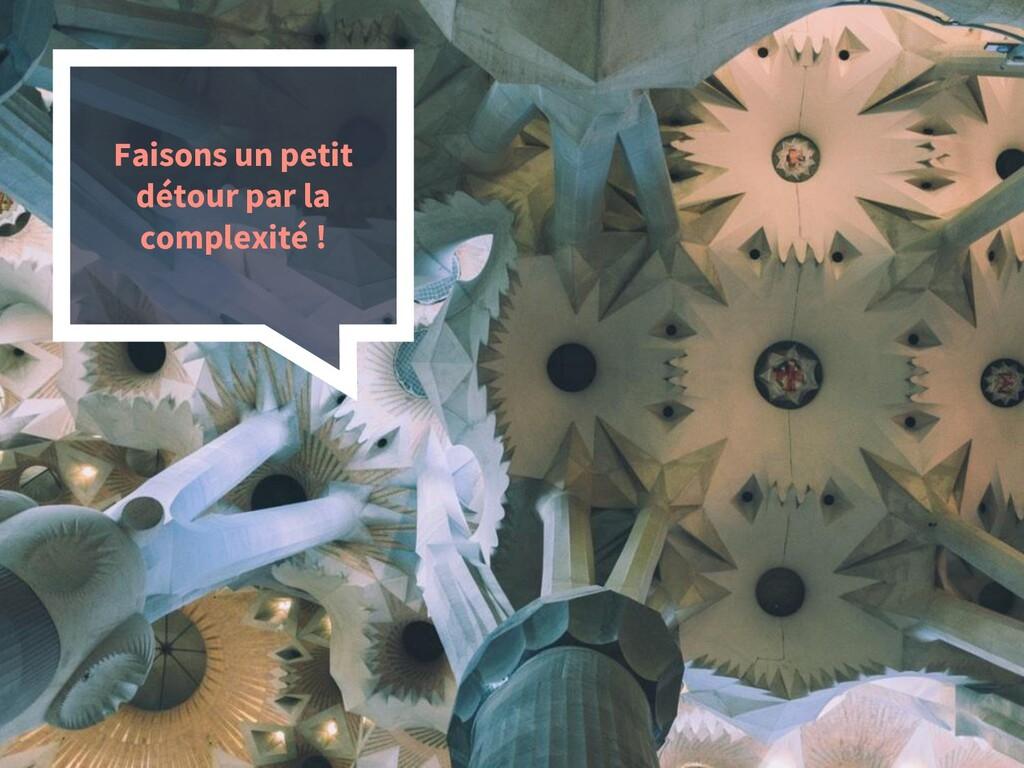15 Faisons un petit détour par la complexité !