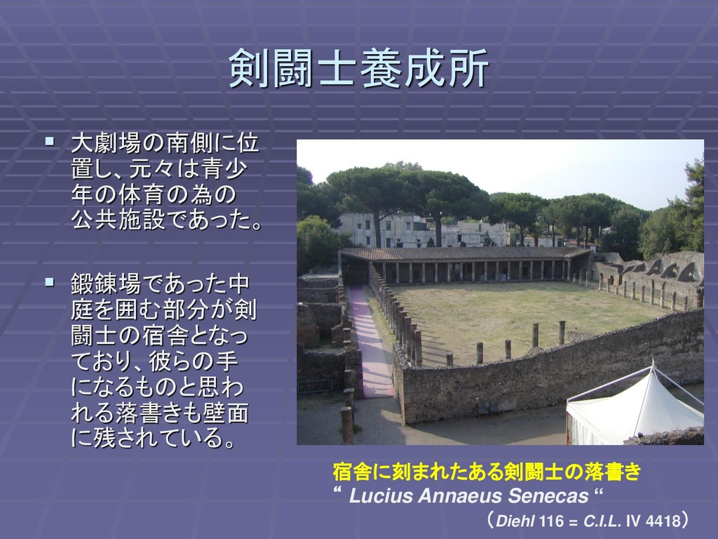 剣闘士養成所 ▪ 大劇場の南側に位 置し、元々は青少 年の体育の為の 公共施設であった。 ▪ ...