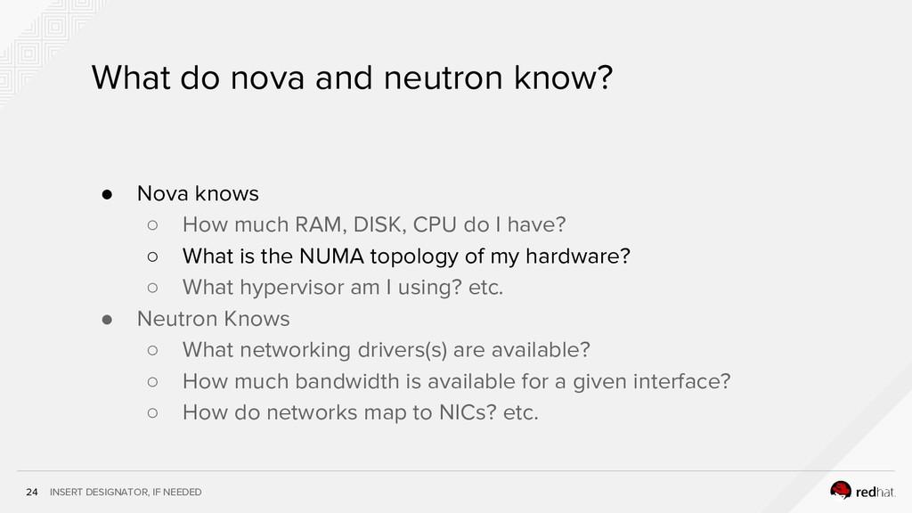 INSERT DESIGNATOR, IF NEEDED 24 What do nova an...