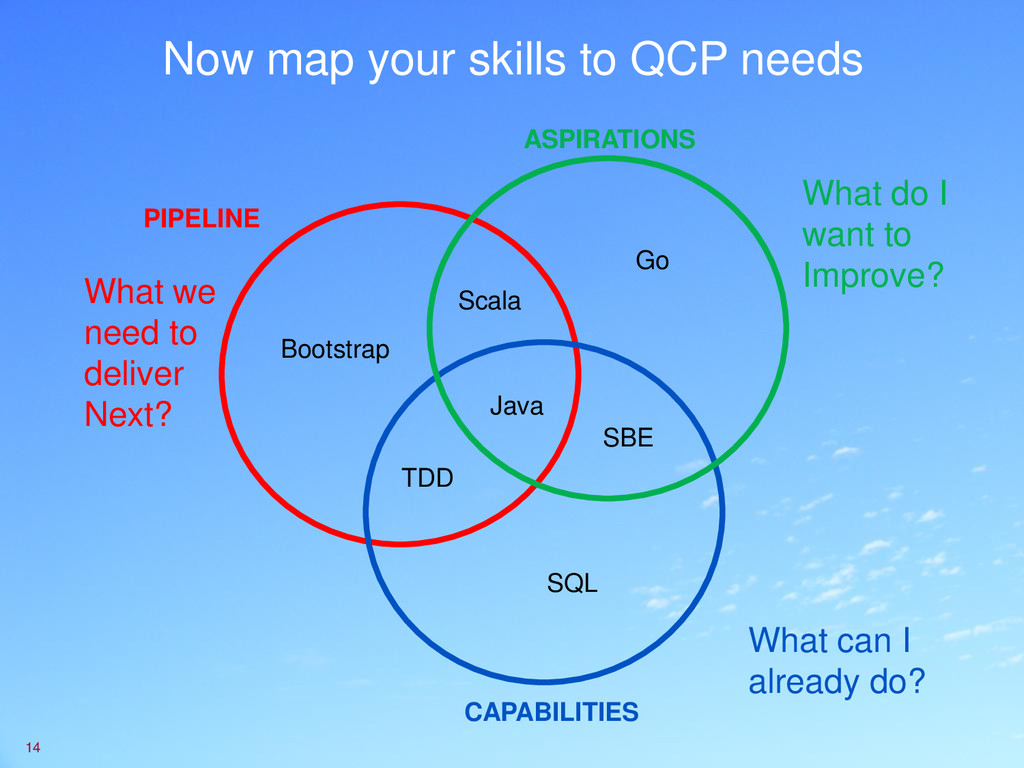 Now map your skills to QCP needs 14 What do I w...