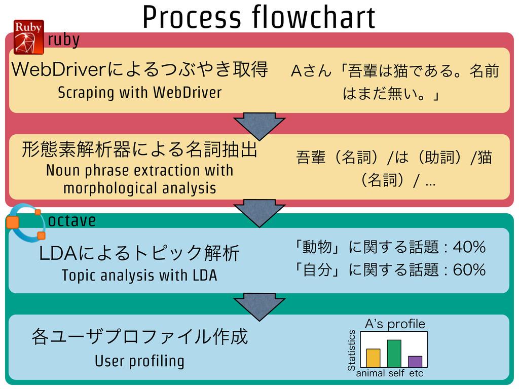 Process flowchart 8FC%SJWFSʹΑΔͭͿ͖औಘ ܗଶૉղੳثʹΑΔ໊...