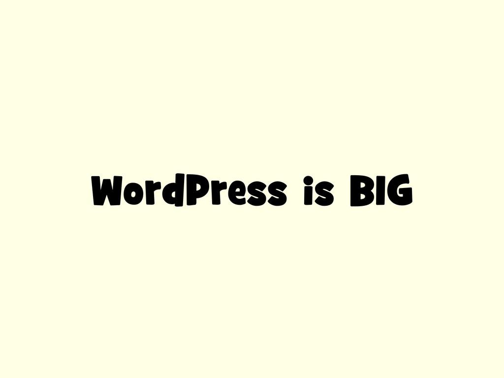 WordPress is BIG