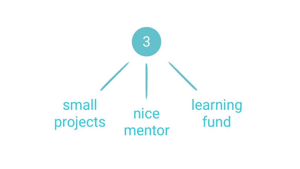 small projects nice mentor learning fund 3