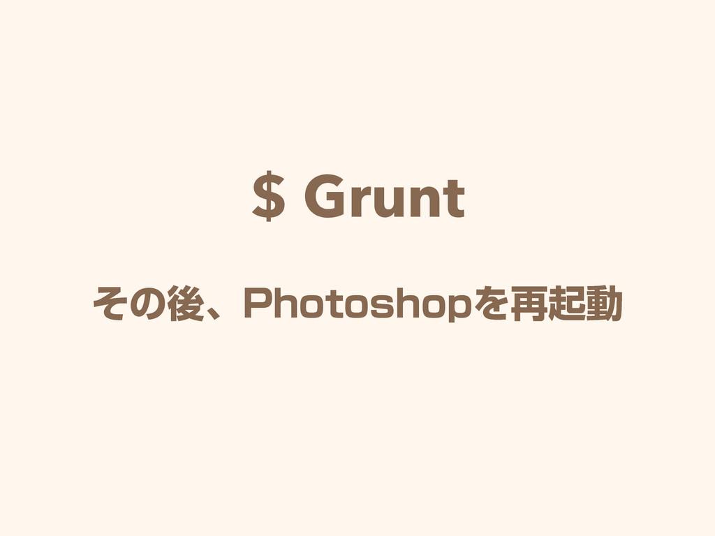 $ Grunt ͦͷޙɺ1IPUPTIPQΛ࠶ىಈ