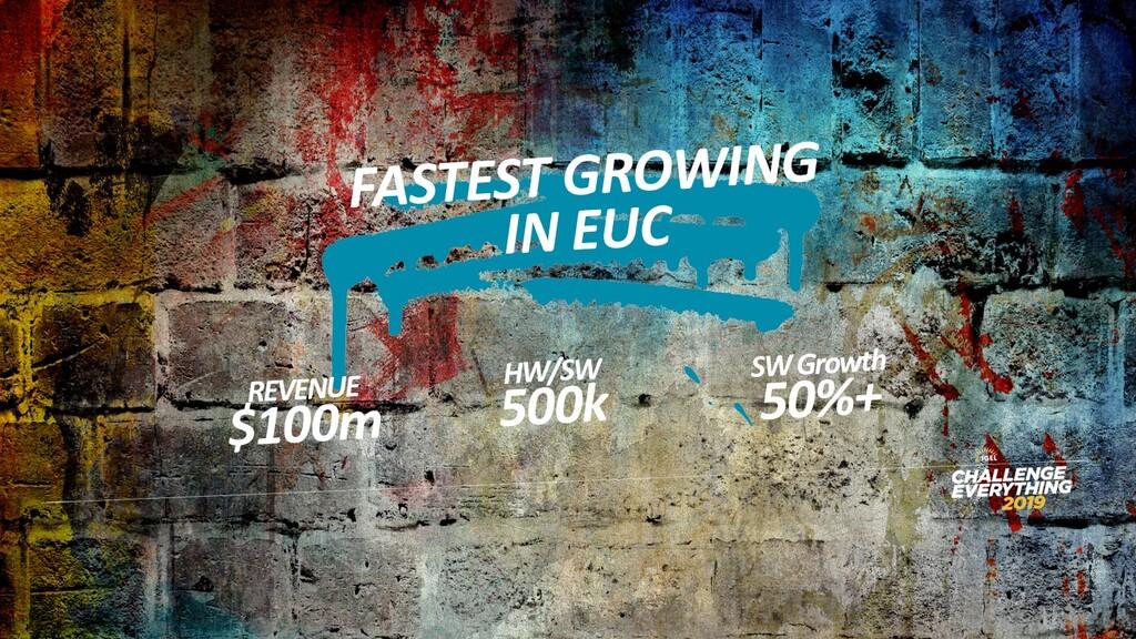 FASTEST GROWING IN EUC REVENUE $100m HW/SW 500k...