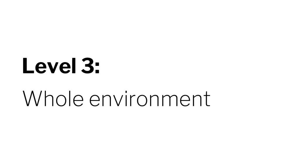 Level 3: Whole environment