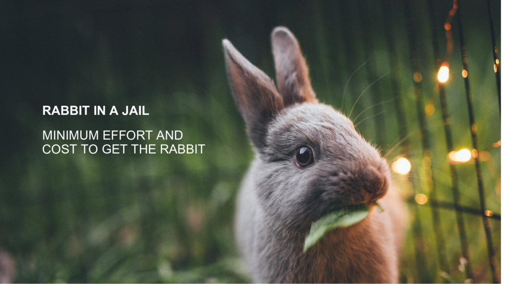 RABBIT IN A JAIL MINIMUM EFFORT AND COST TO GET...