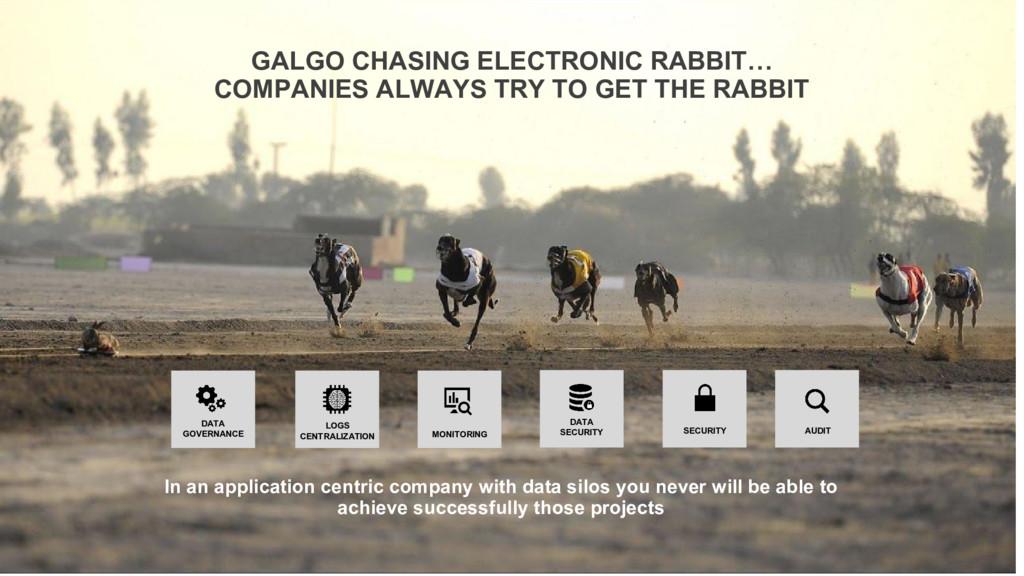 GALGO CHASING ELECTRONIC RABBIT… COMPANIES ALWA...