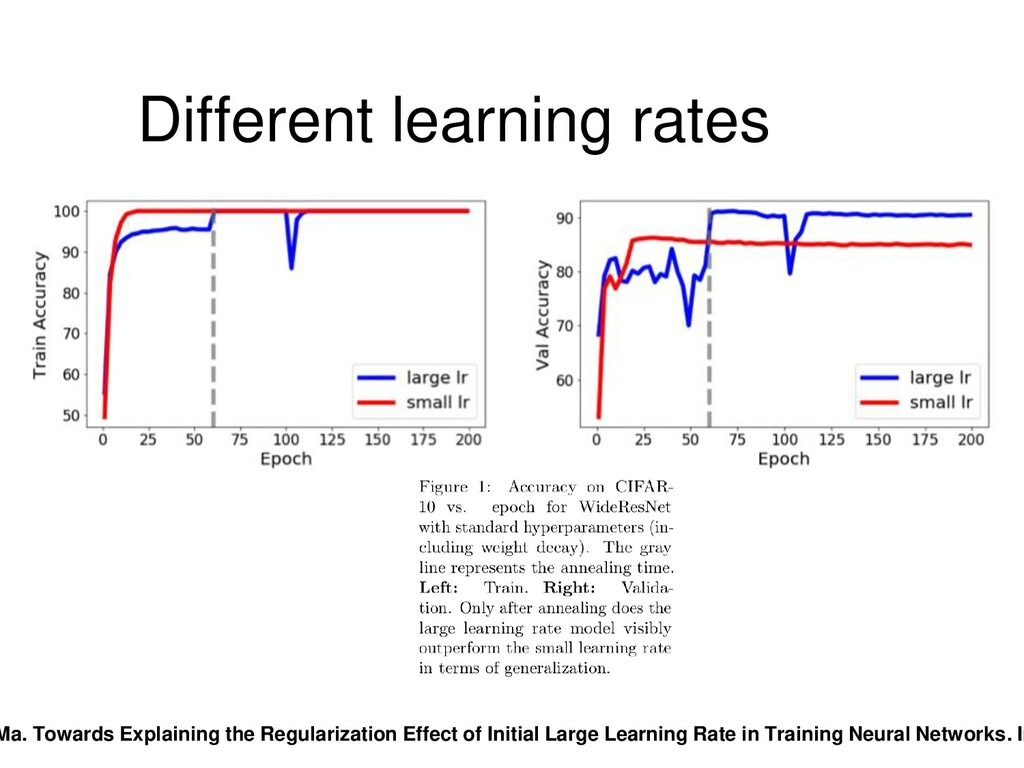 Different learning rates Ma. Towards Explaining...