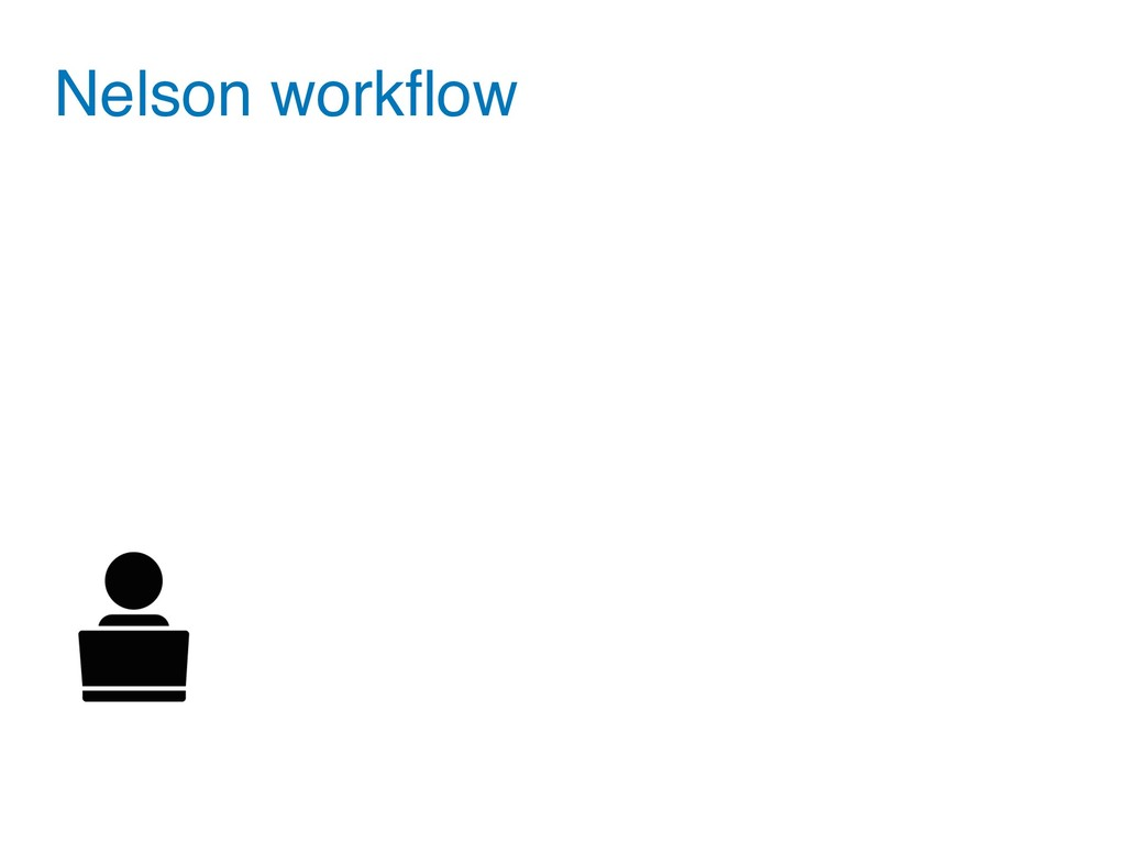 Nelson workflow