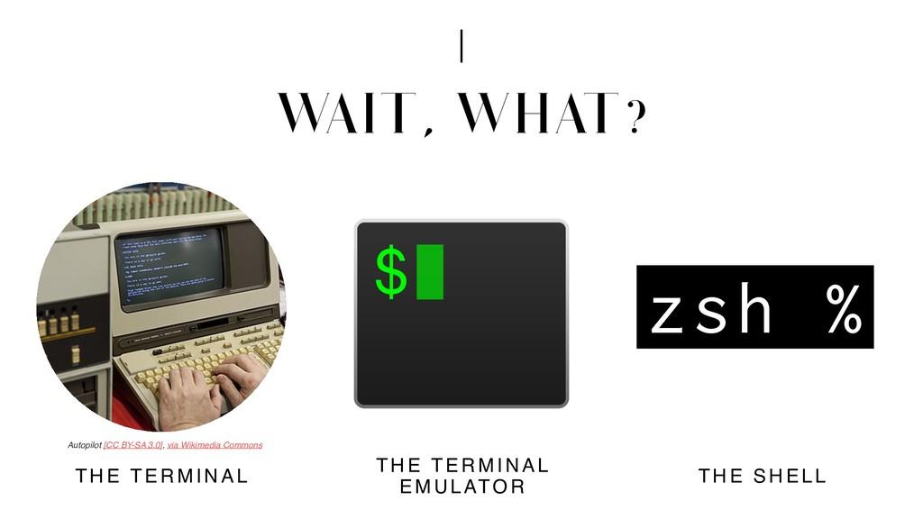W AIT, WHAT? THE TERMINAL THE TERMINAL EMULATO ...