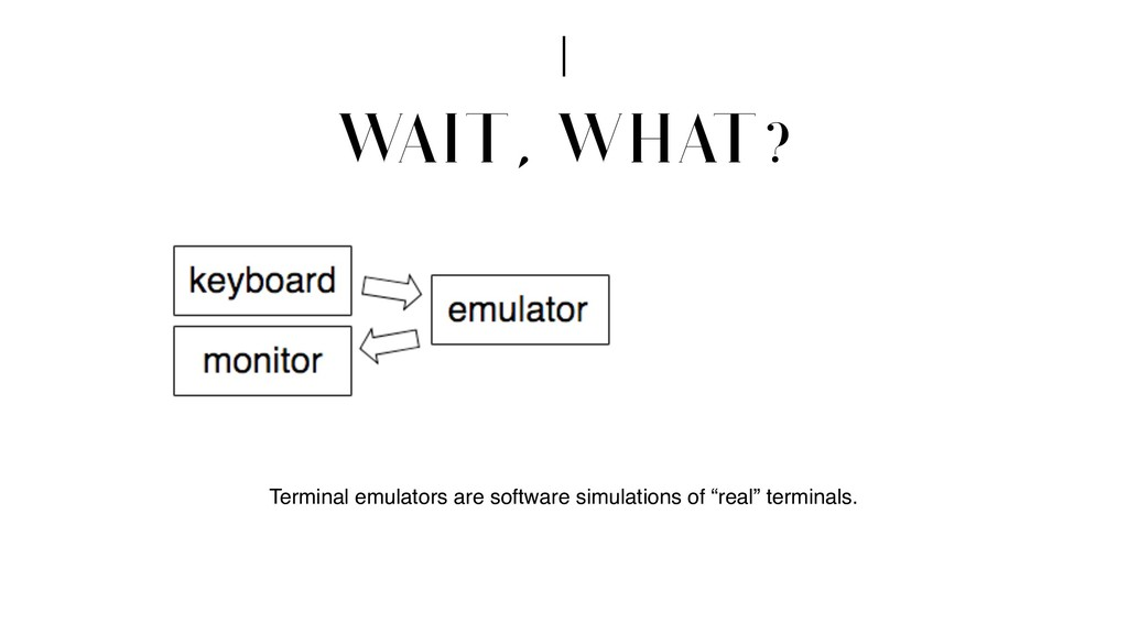 W AIT, WHAT? Terminal emulators are software si...