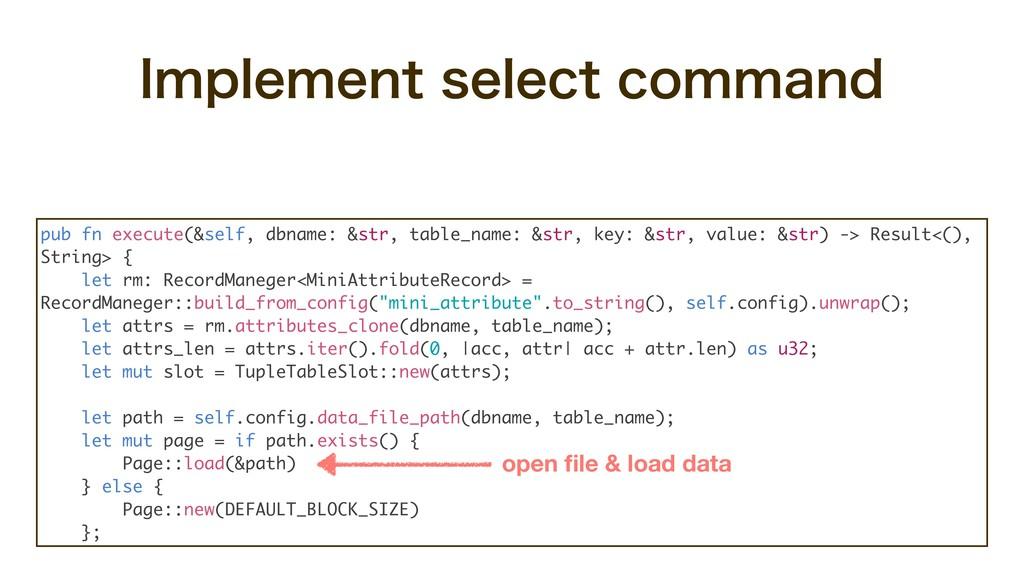 pub fn execute(&self, dbname: &str, table_name:...