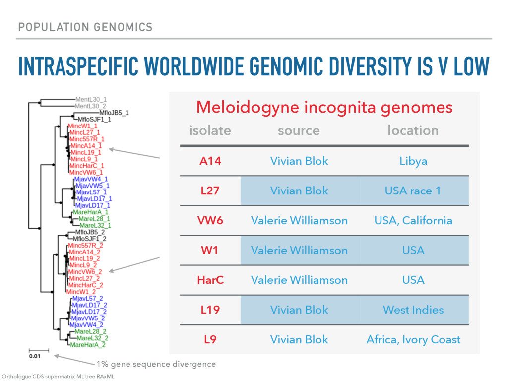POPULATION GENOMICS INTRASPECIFIC WORLDWIDE GEN...