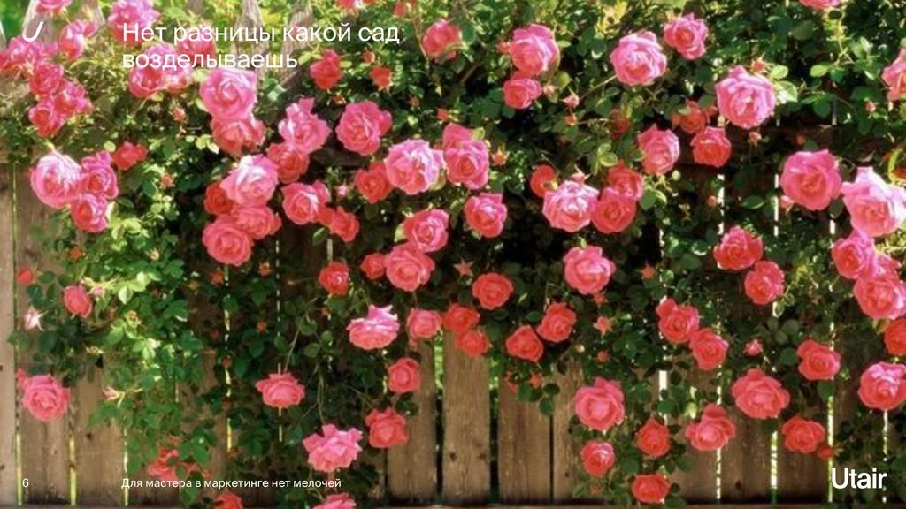 Нет разницы какой сад возделываешь 6 Для мастер...