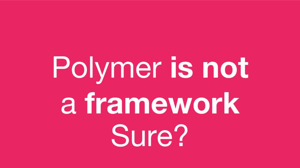 Polymer is not a framework Sure?