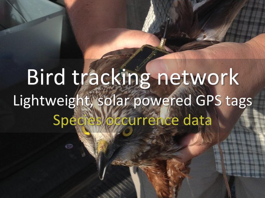 Bird tracking network  Lightweight, ...
