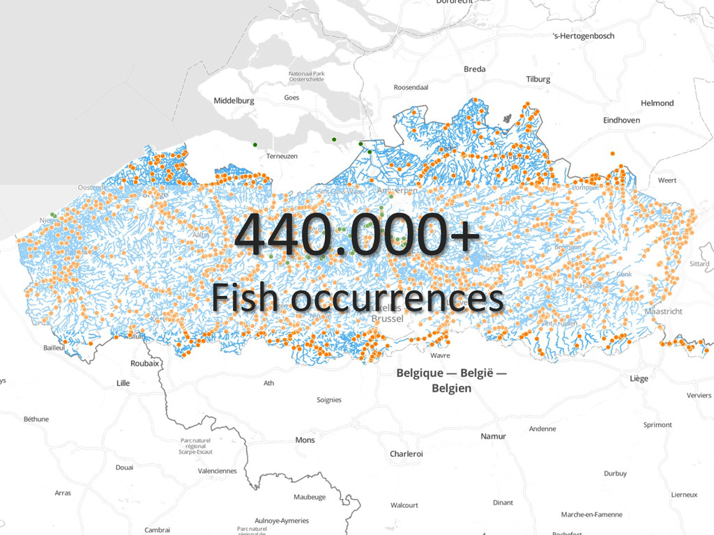 440.000+  Fish occurrences