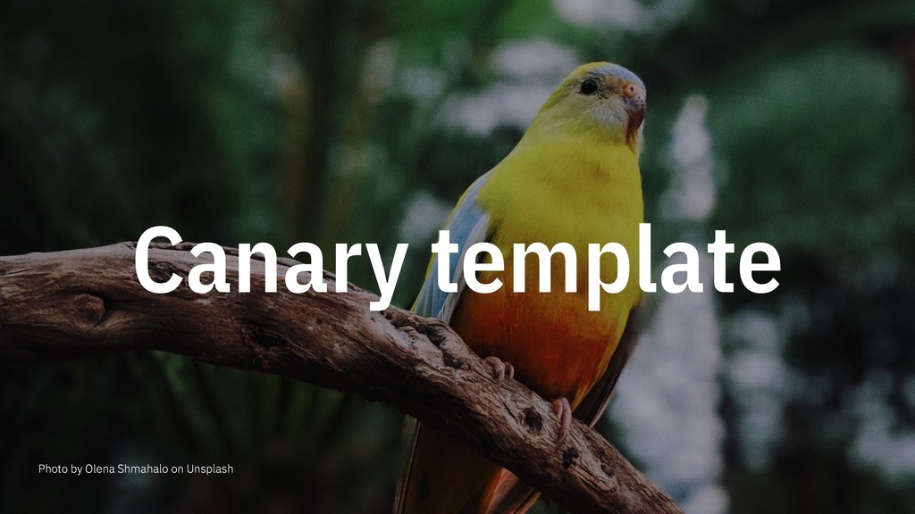Canary template Photo by Olena Shmahalo on Unsp...