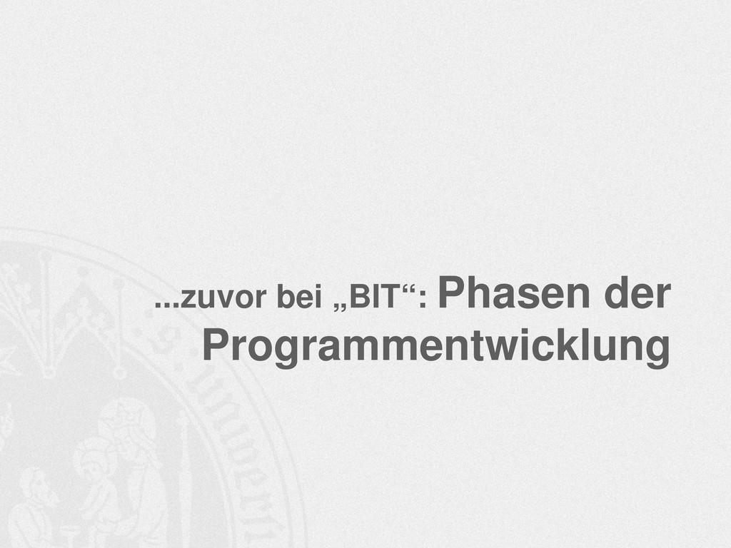 """...zuvor bei """"BIT"""": Phasen der Programmentwickl..."""