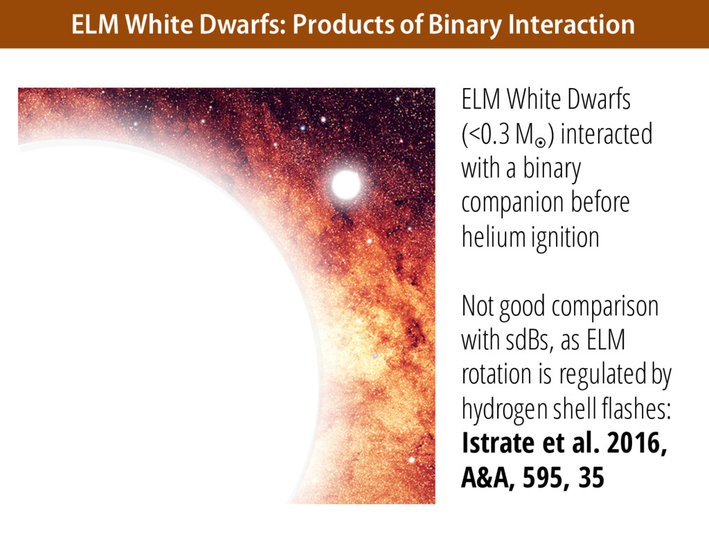 ELM White Dwarfs: Products of Binary Interactio...