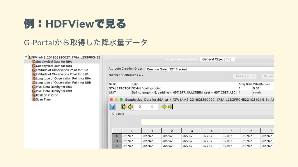 例:HDFView で見る G-Portal から取得した降水量データ